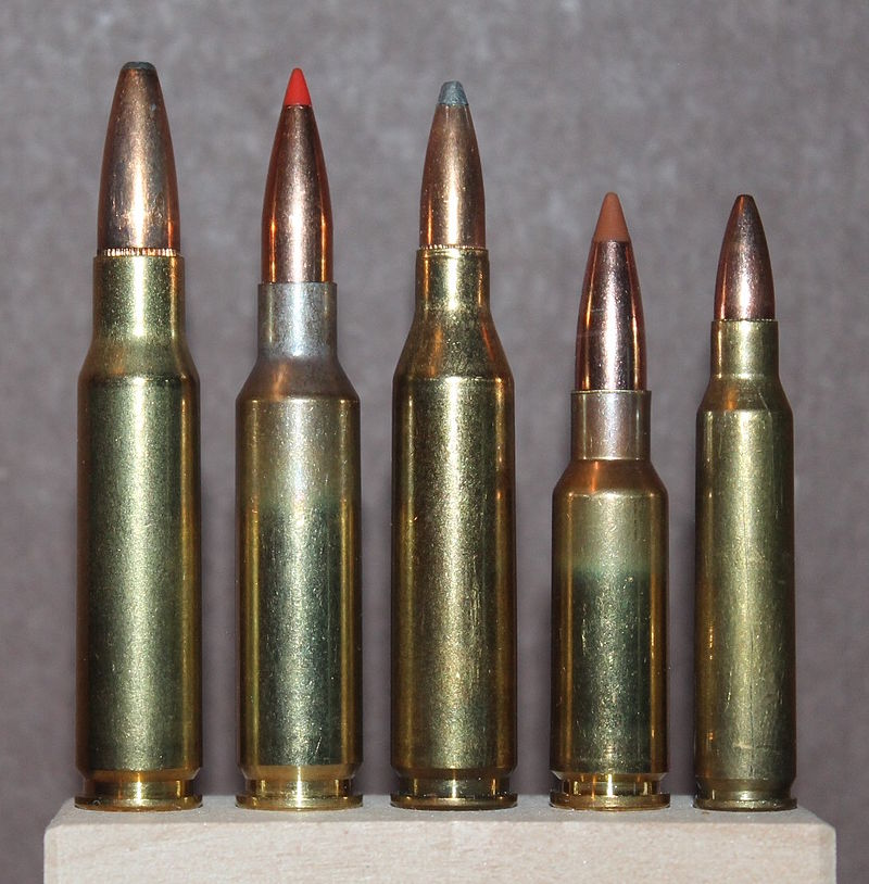 Size comparison left to right: .308 Win., 6.5mm Creedmoor, .243 Win., 6.5mm Grendel, .223 Rem.