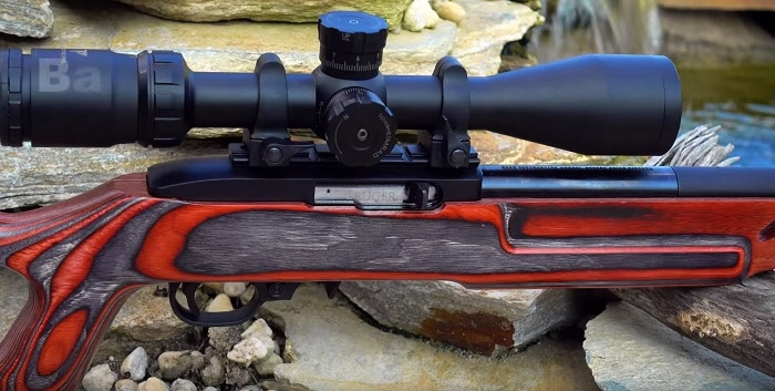 Ruger 1022 Target - 2